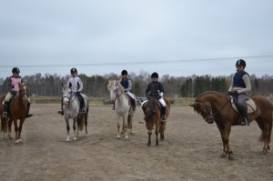 Träningstävling i Laholm