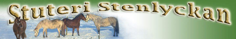 Stuteri Stenlyckan